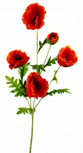 Artificial Poppy Stem Orange/ Red 110cm