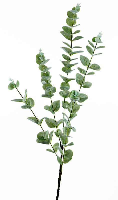 Artificial Eucalyptus Stem Frosted 95cm
