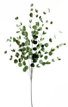 """Artificial Eucalyptus Branch 36"""""""