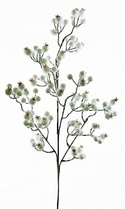 """White Berry Christmas Branch 28"""""""