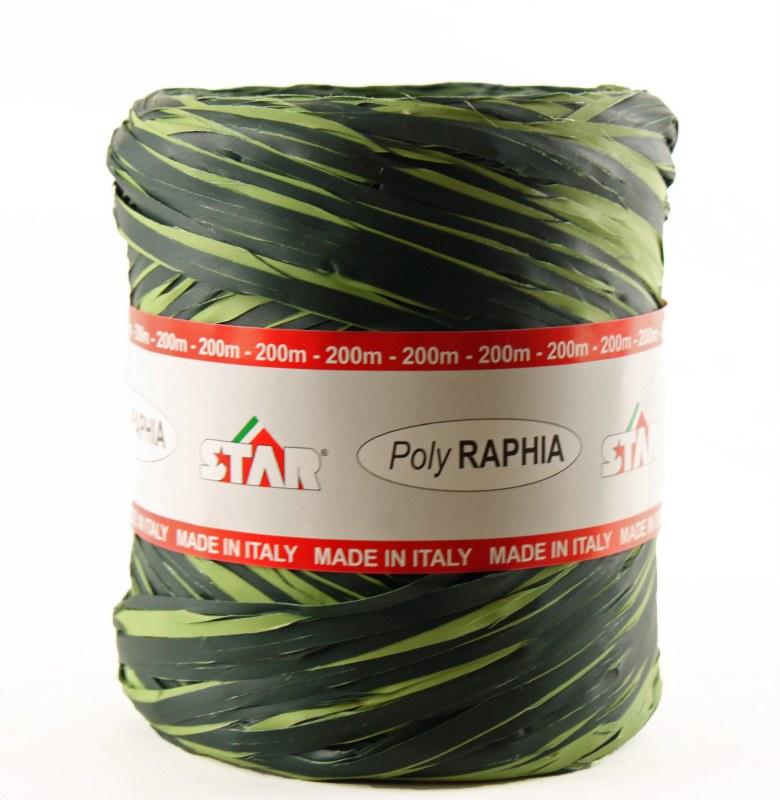 Poly raphia ribbon green/lime 200m