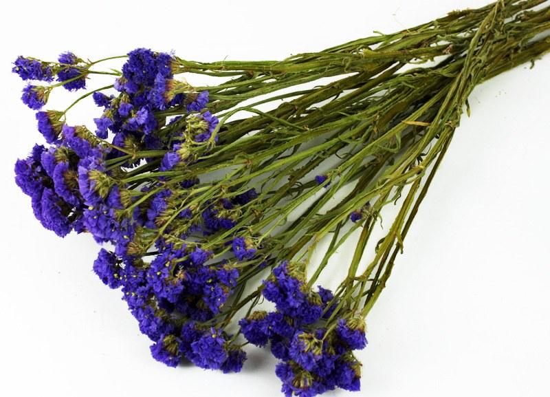 Dried Statice Blue/ Purple