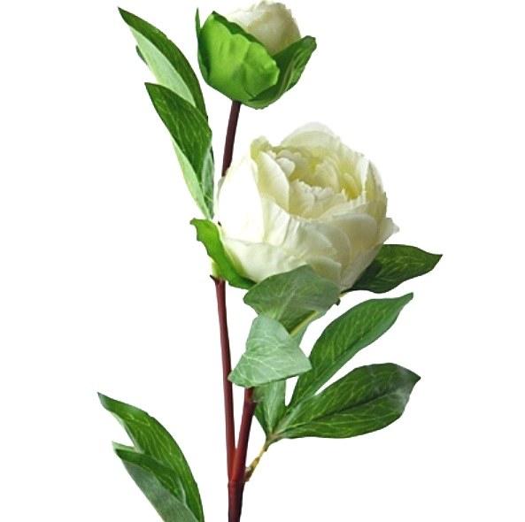 Ivory Peony Rose artificial flower 76cm
