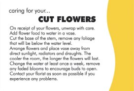 Cut flowers customer care cards