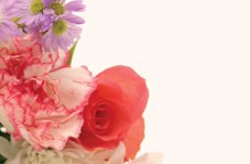 Packet of 50 bouquet florist gift cards