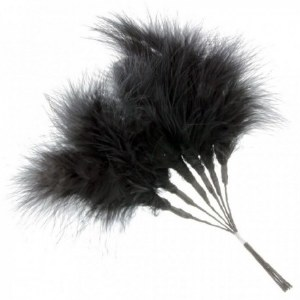 Fluff Decorative Feathers Black x 6