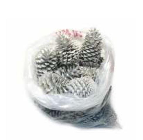 Maritima Large Cones White Wash x 50 pcs Approx