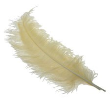 5 x Cream ostrich feathers