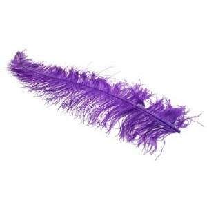 5 x Purple ostrich feathers