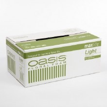 Oasis Floral Foam Light Wet Bricks x 20pcs