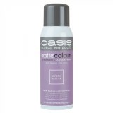 Florist Spray Paint Wisteria Matt 283ml