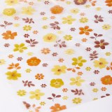 Florist Cellophane Wrap Rustic Scatter Flower 80cm x 100m