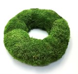 Giant Moss Wreath 75cm Green