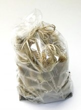 Dried Thistle Heads Natural x 50