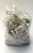 Dried Thistle Heads White Wash x 50