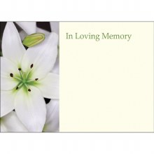 In loving memory white lily florist cards x 9