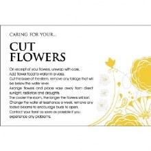 Florist  Cut Flowers Care Cards x 100pcs
