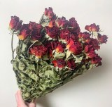 Dried Red Roses Bundle