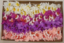 100 x Orchid assorted Christmas florist pick