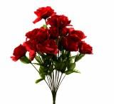 Red open rose bush