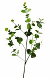 Artificial Eucalyptus Leaves Stem