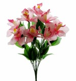Pink Orchid bunch x 9 stems