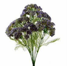 Artificial Queen Anne Lace flower x 9 Stems Lavender