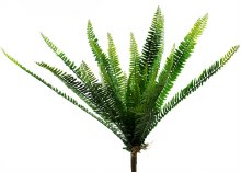 Artificial Boston Fern Bunch Large 64cm