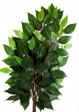 Artificial Ficus Bundle 56cm x 6pcs