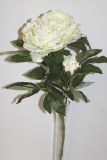Large peony rose artificial flower Ivory 72cm