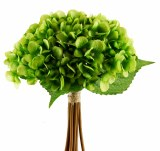 Green Hydrangea bundle x 12 stems 35cm