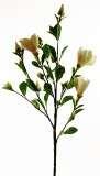 Magnolia Artificial Flower Stem White