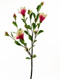 Magnolia Artificial Flower Stem Fuchsia