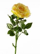 Artificial Rose Single Long Stem - 65cm - Yellow
