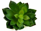 Artificial Succulent 10.5cm x 10cm Green