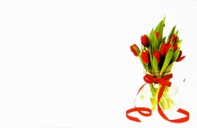 Florist Crads Small Tulip Red x 50pcs
