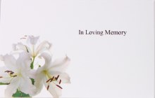Florist Cards In Loving Memory Small x 50pcs