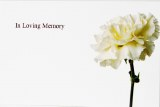 Florist Cards Small In Loving Memory x 50pcs