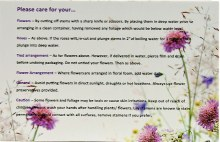 Florist Care For All Flowers Care Cards Small x 50pcs