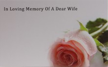 Florist Cards In Loving Memory Of A Dear Wife Small x 50