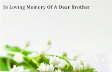 Florist Cards Small In Loving Memory Of A Dear Brother x 50pcs
