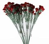 Artificial Spray Carnation Red x 10 Stems