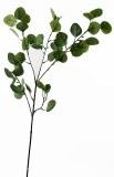 Eucalyptus Stem 90cm