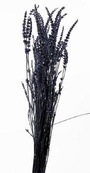 Preserved Lavender Bundle 60cm