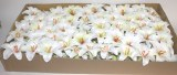100 x Harrissi white Lily Christmas florist pick