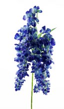 Artificial Wisteria/ Hanging Orchid Blue 110cm