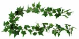 Artificial Ivy Garland 1.6m