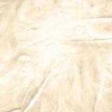 Bridal Feathers Ivory 8g