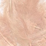 "Bridal Feathers Blush Rose 8g 3""-8"""