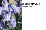 Packet of 50 In loving memory florist cards